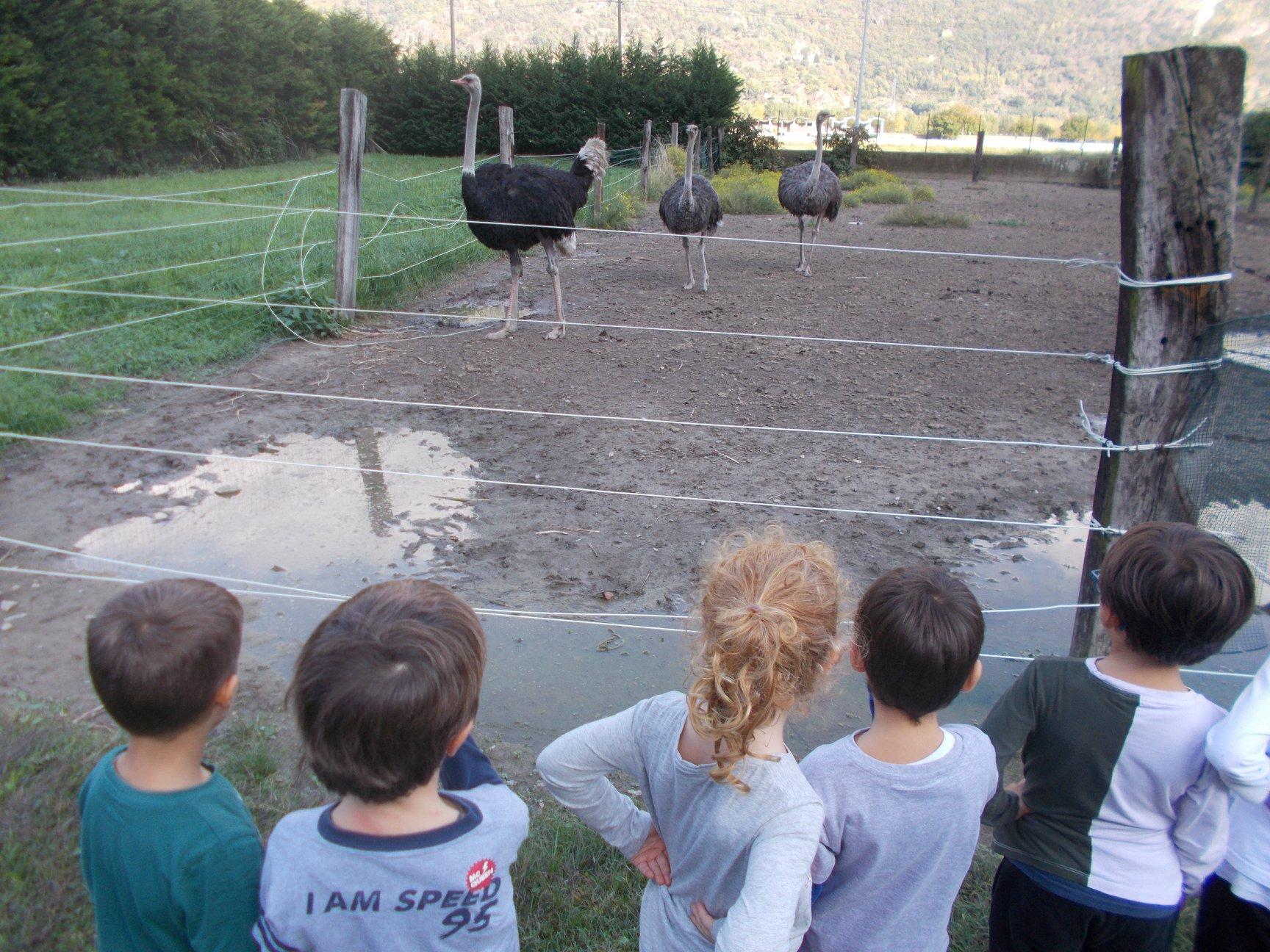 AGRITURISMO CASCINA BARBASSA