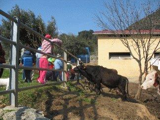 AGRITURISMO ARGENTEA